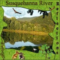 Susquehanna River Reflections