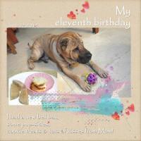 Eleventh Birthday