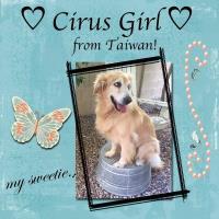 Cirus girl