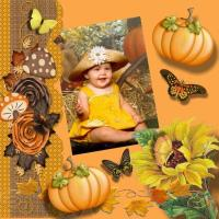 Down In The Pumpkin Patch