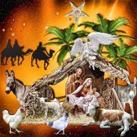 Nativity Scene~