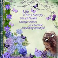 Butterflies & Blooms