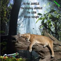 *All Quiet in the Jungle*
