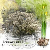 Spring's comming