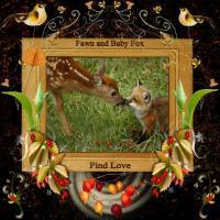 Fawn & Fox Animal Friendship