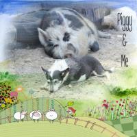 Piggy and Me