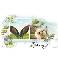 Spring : Ziggy 2
