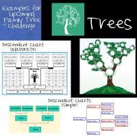 Family Tree Challenge June 2018 Examples
