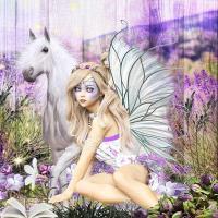 FAIRYLAND - 2018  magie provencale