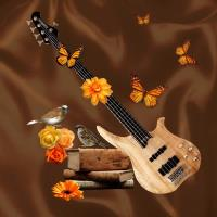 Electric Guitar Richness