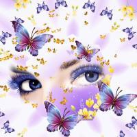 Medley of Butterflies