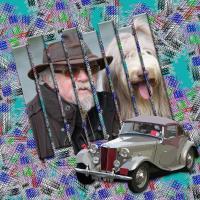 mel dog split image.