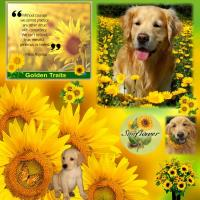 Golden Sunflower Inspiration!