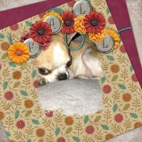 Autumn blessings-Bailey