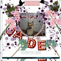 jade by ELLE