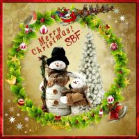 *Merry Christmas SBF*