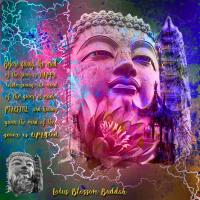 LOTUS BLOSSOM BUDDAH 2