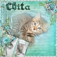 Chita Baby