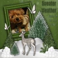 Roxie's new Sweater