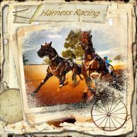 Harness Racing Sport