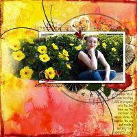 Hibiscus Zoey