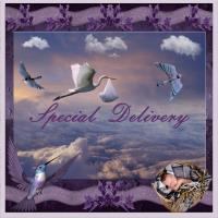 Stork - Special Delivery!