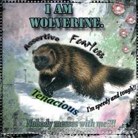 I Am Wolverine