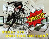 SPIDER WOMAN II