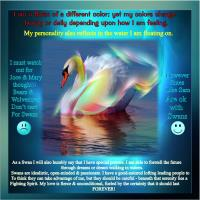 A Swan Becomes Me by saying...