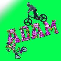 ADAM BIKE 301
