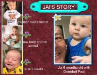 JAIS STORY