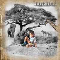 On Safari 19