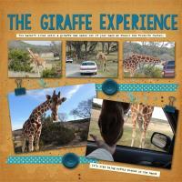 The Giraffe Experience