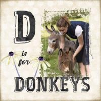 D is for Donkeys