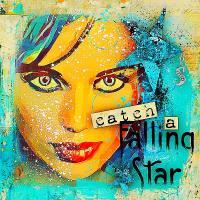 Catch A Falling Star 2