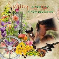 Spring - A new beginning