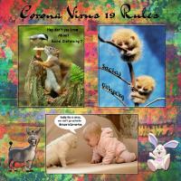 CORONA VIRUS-19 RULES