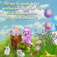 Happy Birthday -- Fairy and friends