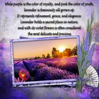Lavender-Language of Flowers