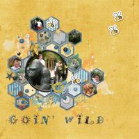 Goin' Wild