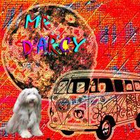 Darcy VW
