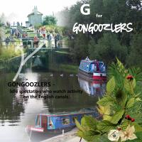 G for Gongoozlers.