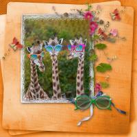 Giraffes with sunglasses