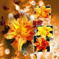 Glitter & Sparkle--Lily