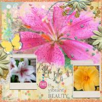 ...  fleurs de beauté