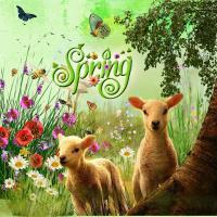 Springtime '20