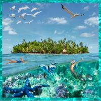 Toberua Island - A Fiji Island